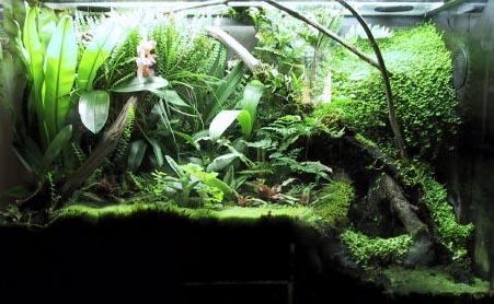 wellenpumpe für nano aquarium
